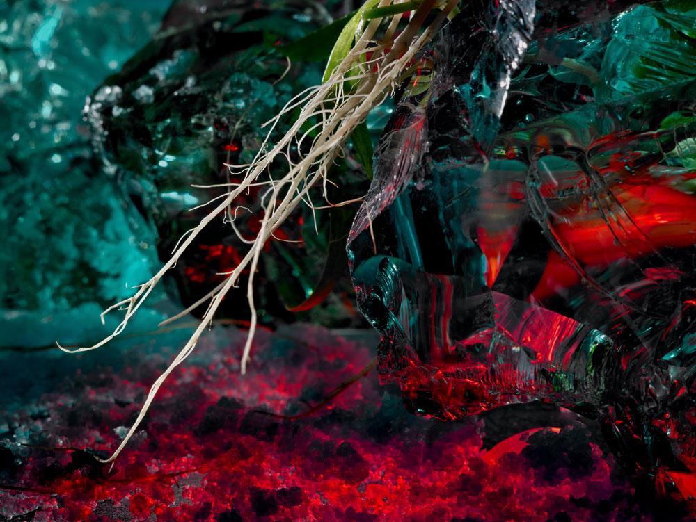 Colección A Horta de Carnati -  Alterados 2006-2007